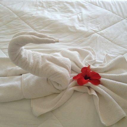 swan, towel, flower